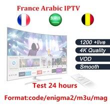 IPTV MAG dispositivo de suscripción para Android TV Box y smart tv más de 1200 Canales de IPTV Árabe Francés Bélgica un año de suscripción