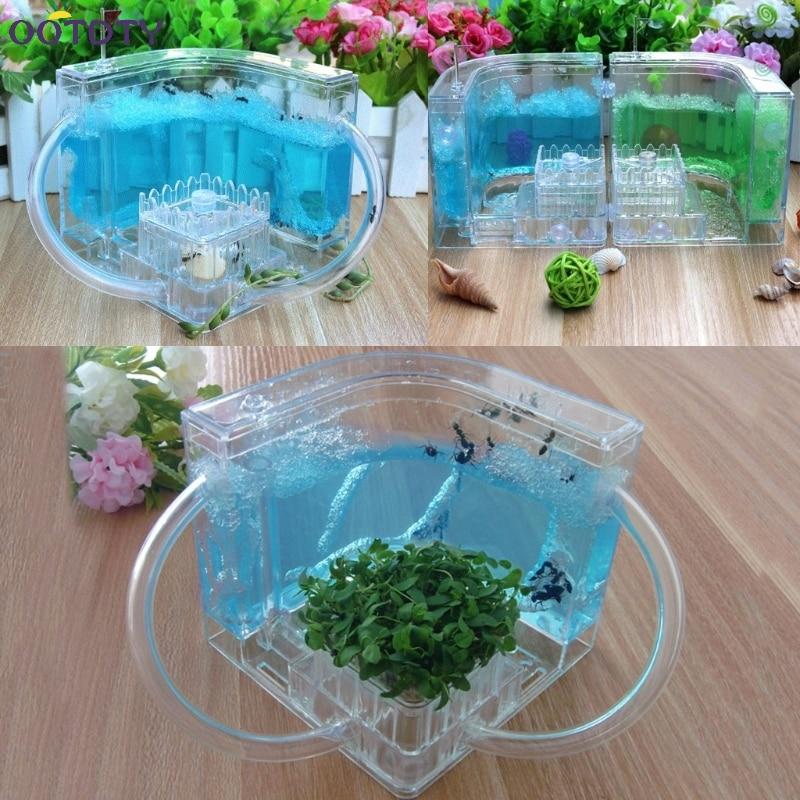 3D Ant Farm Educational Maze Live Feeding System Ants Habitat World Pet Villa(China)