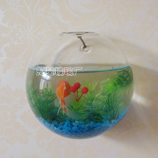 Decorative Glass Fish Bowls Delectable Diameter  12Cm Wall Mounted Glass Aquarium Creative Glass Decorating Design
