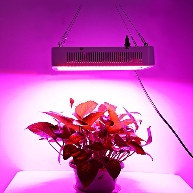 lamps grow vegetable lamp growing item lights bulbs from leds light led flower in systems lighting hydroponics for plant