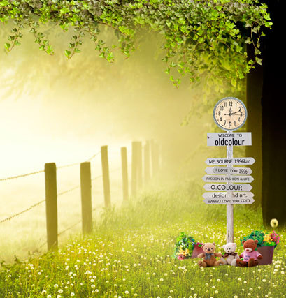 Spring scenic photography backdrops 6.5x10 ft vinyl print for photo studio portrait photographic background CM-4509