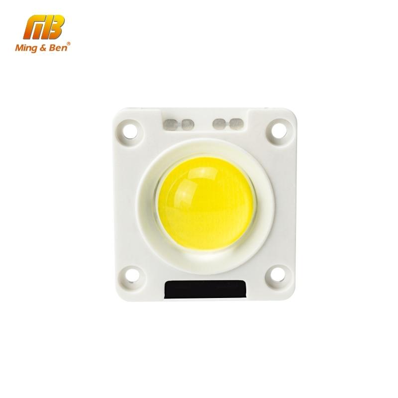LED Lamp LED COB Chip 20W 30W 50W AC 220V Warm White Day White Cold White Lampada For Flood Light Spotlight DIY Outdoor Lighting
