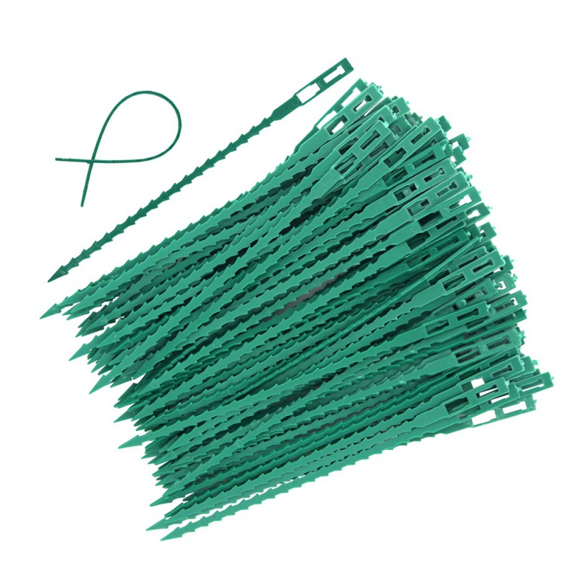 50/100pc Plastic Plant Cable Ties Reusable Cable Ties For Garden Tree Climbing Support Adjustable Garden Plant Tying Tool