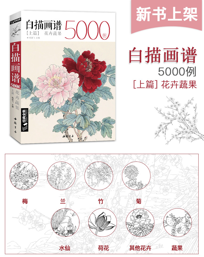 Image 2 - New Hot Chinese Line drawing painting art book for beginner 5000 Cases Chinese bird flower landscape gongbing painting books-in Books from Office & School Supplies