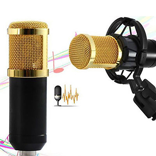 BM 800 Condenser Pro Audio Microphone Sound Studio Dynamic Mic + Shock Mount