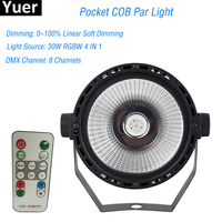 High Brightness Arrival Plastic Par Lights 30W RGBW 4IN1 COB Par Cans DMX 8 Channel Good For DJ Disco Mini Concert Stage LED