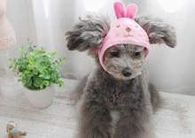 Caps for Pet, Cute Carton Pet Hat For Small Dogs & Cat, 6 Color