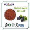 GMP polvo puro Extracto De Semilla De Uva OPC antioxidante, rico en polifenoles y proantocianidinas 250g