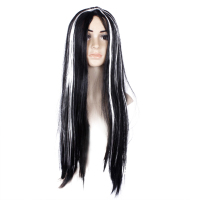 Women Girls Long Straight Black Synthetic Fiber Wig With White Highlight Wig Ghost Wig For Halloween