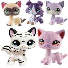LPS pet shop toy cat series cute shorthair cat tiger cat big