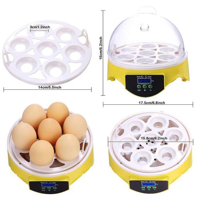 Mini 7 Egg Incubator Poultry Incubator Brooder Digital Temperature Farm Hatchery Egg Incubator Chicken Duck Bird Pigeon Hatcher 4
