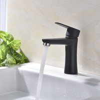 304 Stainless Steel Paint Hot Cold Basin Mixer Bathroom Faucet Black White Brushed Single Kitchen Faucet LI 08