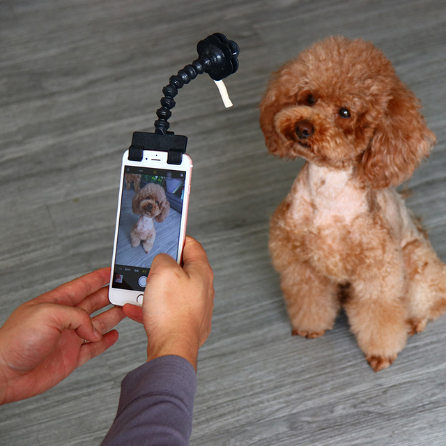 Pet Selfie Stick for Pets Dog Cat fit iPhone Samsung and Most Smartphone Tablet Black/White Drop Shipping