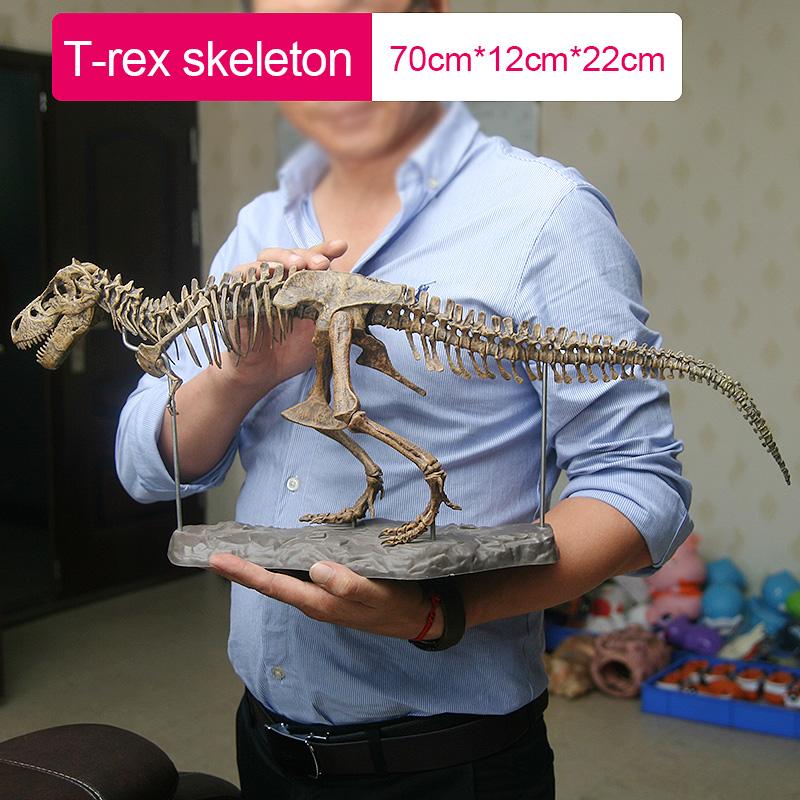 Large Dinosaur Fossil Skull Animal Model Toys Tyrannosaurus rex Assemble the skeleton model Furnishing articles decoration
