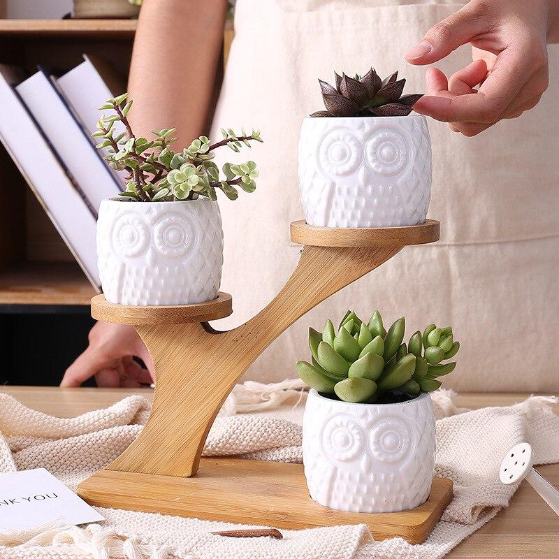 1 Juego de macetas de jardín de Unidades búho de cerámica Modernas Decorativas para guardería suculentas macetas 3 plantas bonsái con estante de bambú de 3 niveles