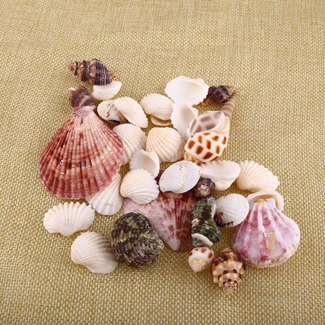 Hot Sell Artificial Shell Aquarium Ornaments Decor One Bag Colorful Fish Tank Aquarium Decoration Accessories Shell Toy XP0433