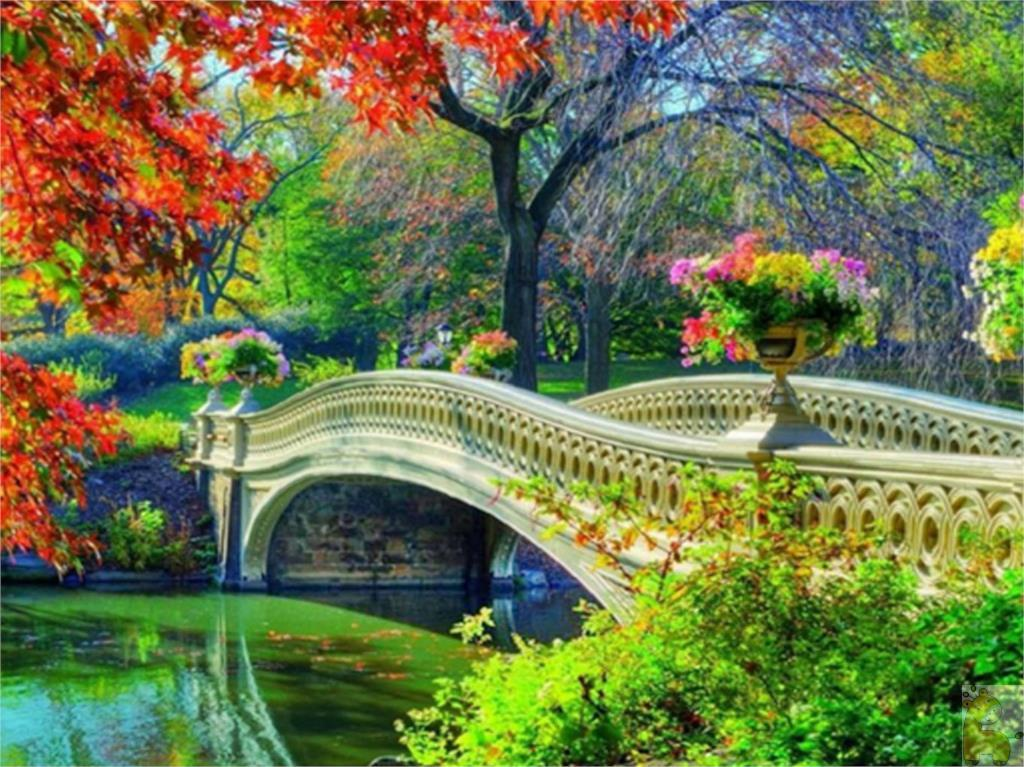 Popular Garden Bridge Kit Buy Cheap Garden Bridge Kit lots from