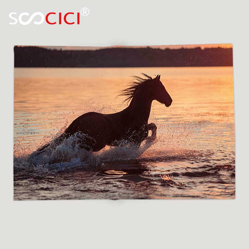 Custom Soft Fleece Throw Blanket Equestrian Horse Sea at Sunset Time Horizon Speed Exotic Nature Animal Picture Art Salmon Dark
