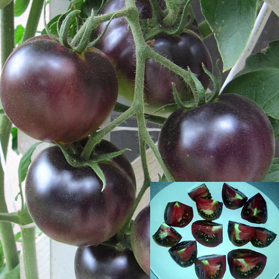 100 pcs / bag, Free shipping Black pearl nutritional content of fruit tomato