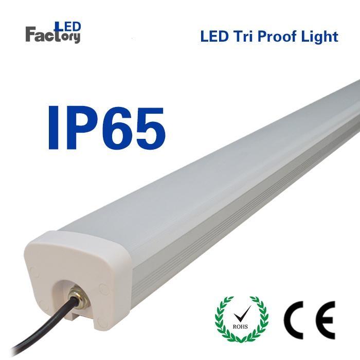 8 Pieces alot Tri-proof Tube Light 40W 60w Tri-proof Tube Light  IP 65 1.2m Tri-proof Tube Light aqua lung tri light pro