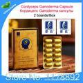 3 caixas de desenvolvimento Intelectual liga jinshuiyuan ganoderma lucidum Cápsula cordyceps cordyceps Ganoderma melhorar a imunidade
