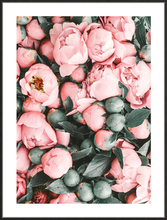 Pink Rose White Flower Nordic Decoration Home Canvas Art Bud Posters And Prints Wall Painting Poster Unframed