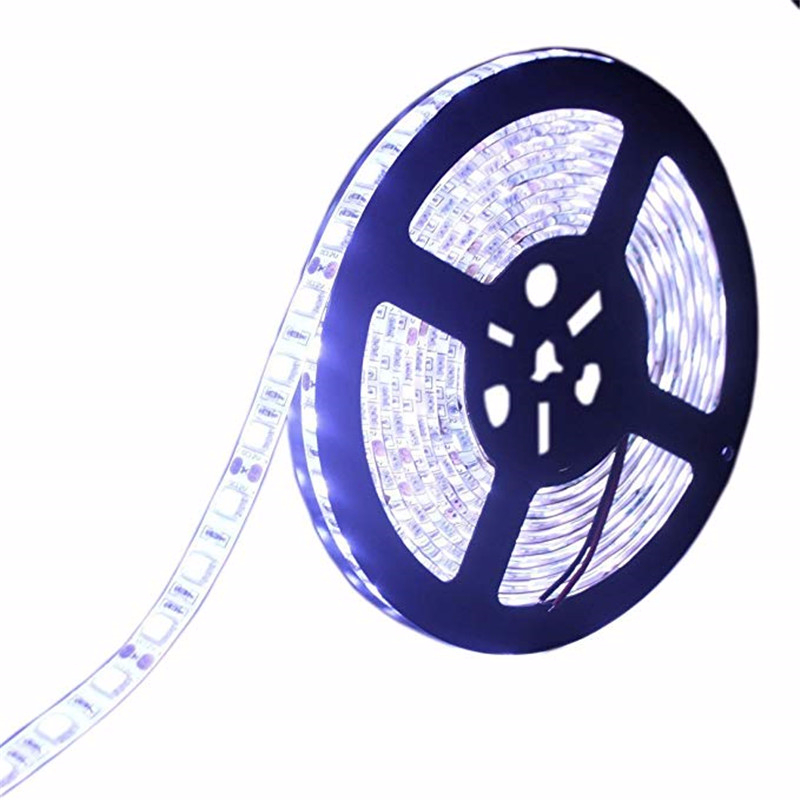 5M DC 24V Waterproof DIY 2835SMD DC5V Flexible LED Light Tape Ribbon Cold White/Warm White/Blue Strip RGB LED Stri