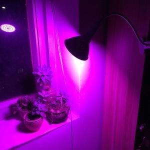 Image 3 - 36 200 290 LED bitki büyümek ampul tam spektrum fito phyto büyüyen lamba klip kapalı oda çadırı çiçek sebze sera