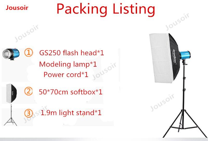 Godox GS250 250 w ensemble de lampes photographiques Flash kit de lampes flash unique studio lampe studio softbox Studio CD50 T03
