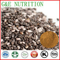 100g Chia seed  Extract with free shipping