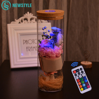 Romantic RGB Night Light Flower Rose Bottle Dimmer Lamps With Remote Control For Valentine's Day Birthday Gift Home Decoration