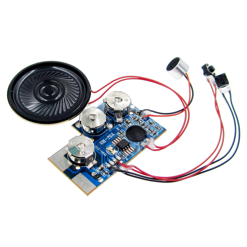 Online Shop Micro Digital Recording And Playback Voice Ic Chip Sound