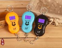100pcs/lot 40kg 10g Portable Electronic Digital Scale Hanging Scale Fishing Fish Hook Pocket Weighing Scale with led light
