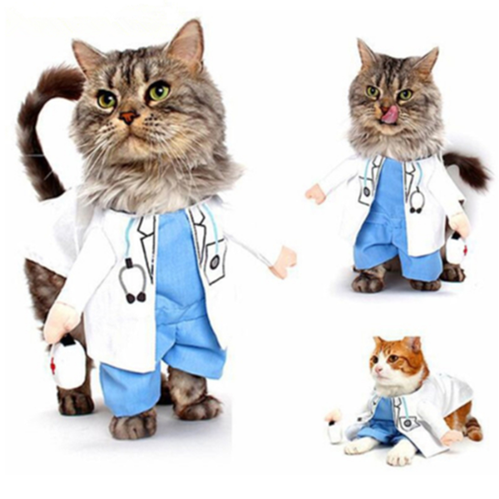Funny Uniforrm Cat Halloween Costumes  2