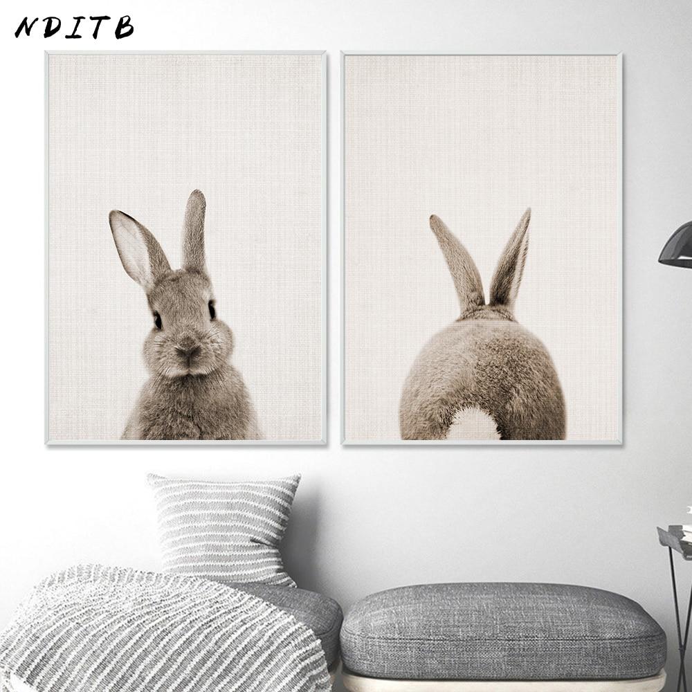 Постер хвост кролика