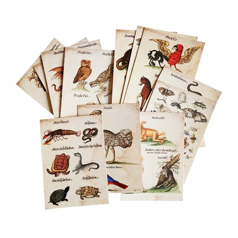 16 Pcs/lot New Vintage Animal Business Cards Postcard Owl Snake Insect Lovely And Ferocious Animal Greeting Card Classic Cards