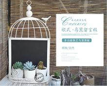 European-style vintage iron art bird cage, black coffee, tea shop decoration, wall decoration decoration.