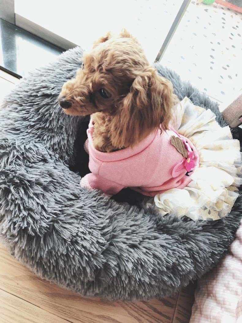 Круглая кровать для собаки моющийся длинный плюшевый домик для кошки дом супер мягкие хлопковые коврики диван для собаки чихуахуа корзина для собак кровать для домашних животных