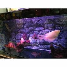 Водонепроницаемый Рок аквариум фон плакат с камнем HD оформление аквариума пейзаж с клеем на поверхности