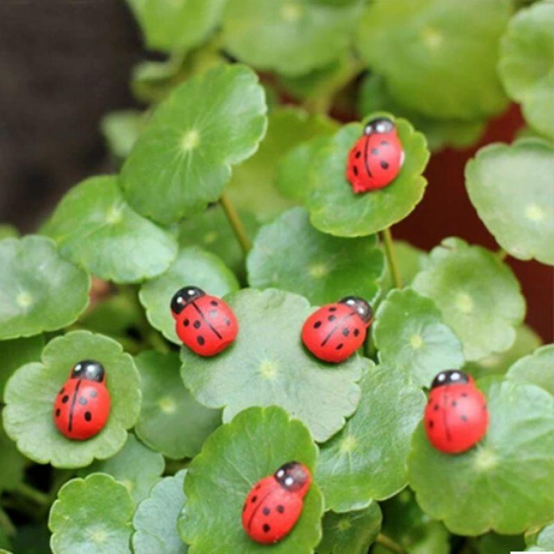 100Pcs/Set 1.5cm*1.1cm Micro Landscape Ornaments Wooden Craft Ladybird Beetle Little Ladybug DIY Accessories Home Decoration A7