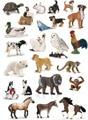 Original genuine wild life zoo jungle farm animals model series 2 kids educational toy for children gift
