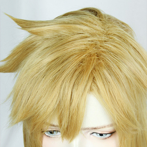 Image 5 - 젤다의 전설: 와일드 링크의 숨결 짧은 황금 금발 조랑말 꼬리 머리 코스프레 의상 가발 내열성 섬유 + 귀