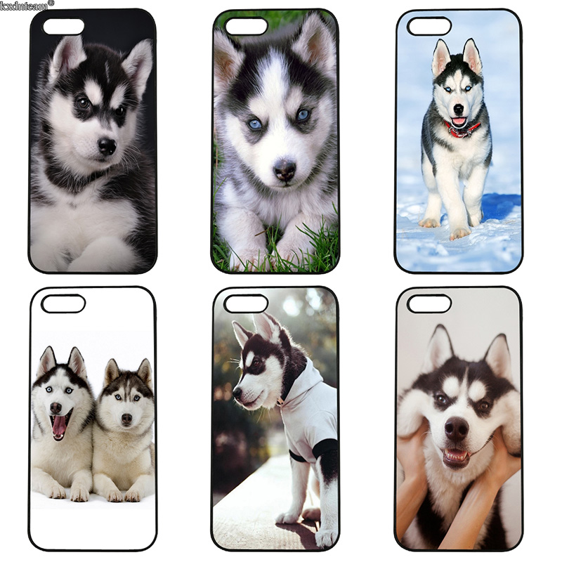 Animals Dogs Husky Mobile Phone Case Hard PC Anti-knock Cover for iphone 8 7 6 6S Plus X 5S 5C 5 SE 4 4S iPod Touch 4 5 6 Shell
