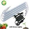LED Grow Light 3 Red 1 Blue DC12V Low Voltage LED Bar Light Set IP68 Waterproof