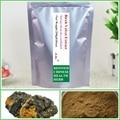 250g(8.81oz) Betulin extract Birch Velvet Extract obliquus Chaga Mushroom Extract