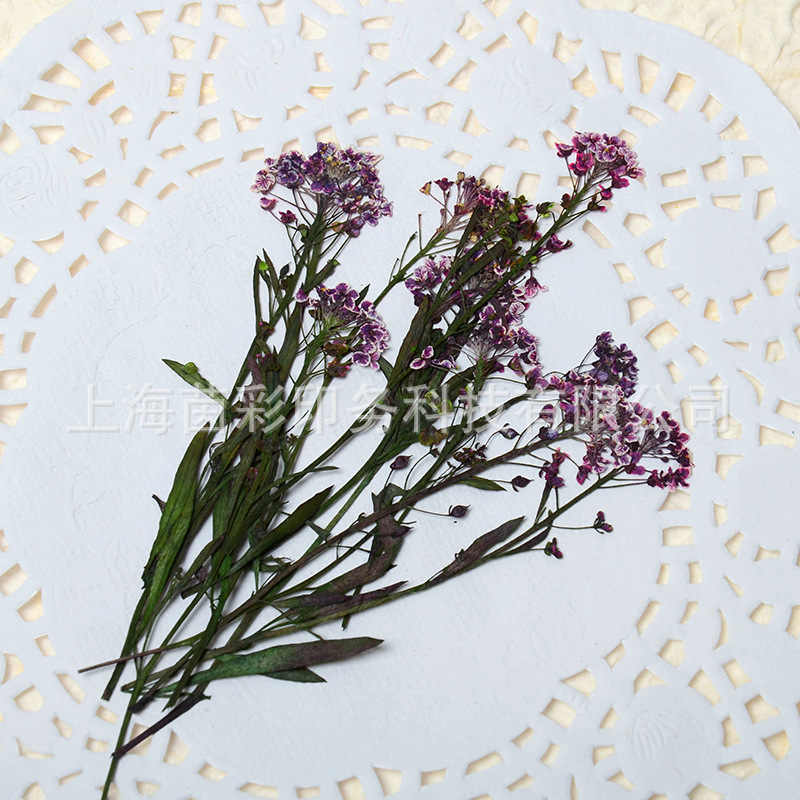 Natural Decorative Pressed Dried Flower for DIY Candle Making Supplies Wax Tablet Decor Wedding Party Decoration Candles 3DLZY03