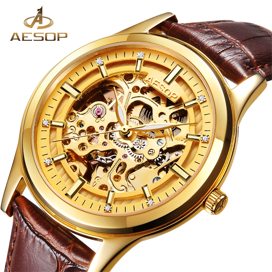 AESOP Luxury Men Classic Automatic Mechanical Watch Gold Skeleton Brown Leatherl Strap Men's Watches Top Brand Luxury Wristwatch rosdn luxury men gold watches famous brand men s automatic mechanical watch mans gold skeleton mechanical wristwatch