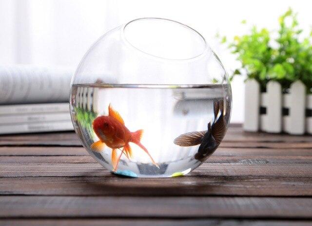 Dia10cm Round Glass Bowl Vase Succulent Terrarium Glass Fish