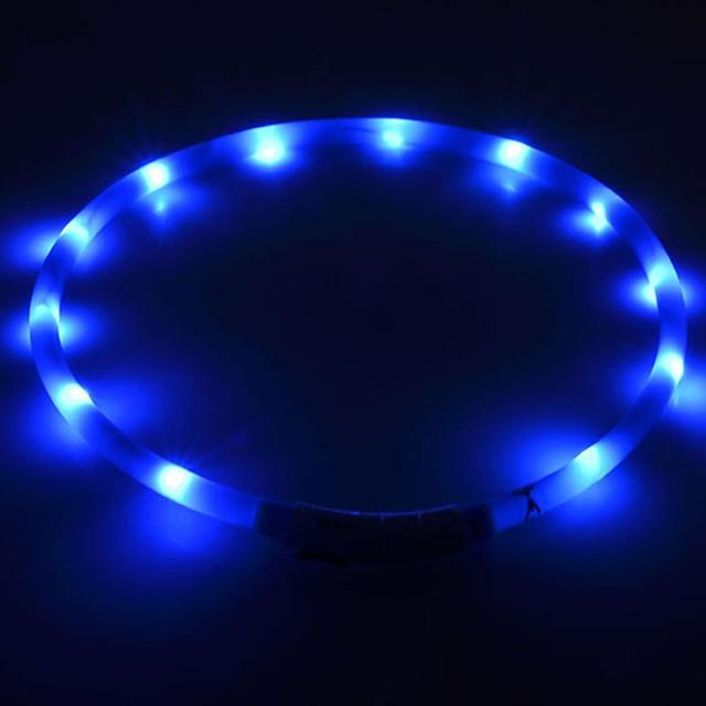 pet collar led lightOutdoor Dog Collars USB luminous USB charging Cat dog collar Teddy Night Flashing Light Collar Pet supplies