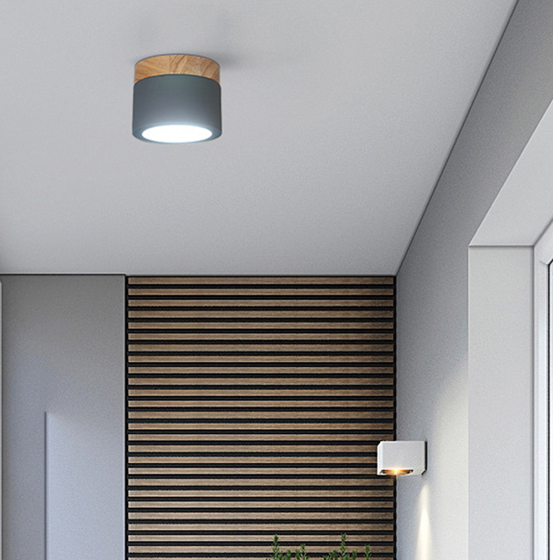 ceiling light xiang (10)
